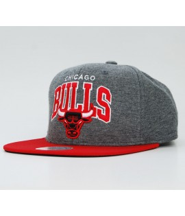 MITCHELL & NESS Snapback Chicago Bulls Gris-Rouge Jersi