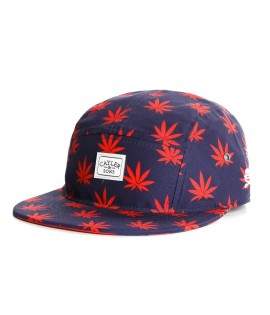 Casquette Cayler & Sons 5 Panel Budz n Stripes Noir