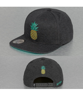 Casquette Snapback Just Rhyse Tofo Cap Gris Ananas